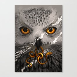 Threads of light Canvas Print