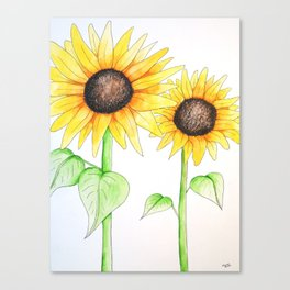 Sunflower Watercolor & ink Canvas Print