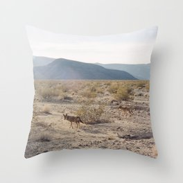 Panamint Valley Coyotes Throw Pillow