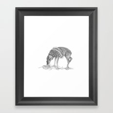 The Deer  Framed Art Print