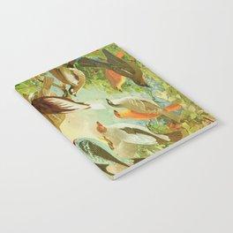 Amazonian Birds by Göldi & Emil August Belem Brazil Colorful Tropical Birds Scientific Illustration Notebook