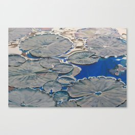 Within Islands Canvas Print