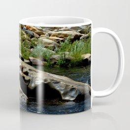 Center Rock Coffee Mug