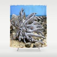 bleach Shower Curtains featuring Bermuda  Driftwood by Judy Palkimas