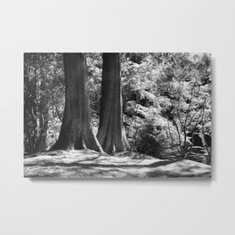 Two trees stand together in Japanese Garden Metal Print