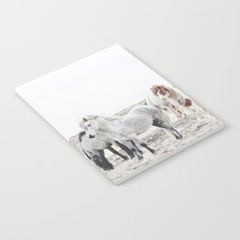 WILD AND FREE  1 - HORSES OF ICELAND Notebook