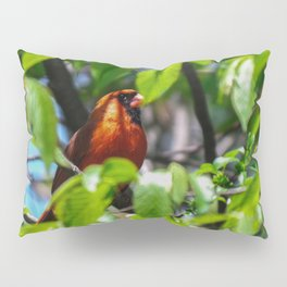 A Male Cardinal Peering Through the Trees Pillow Sham