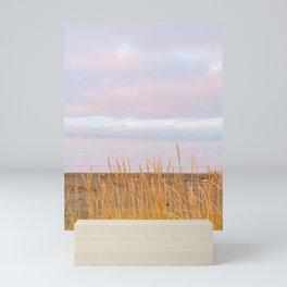 Calm waters III Mini Art Print