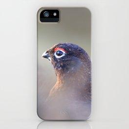 red grouse (Lagopus lagopus scotica) iPhone Case