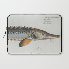 This is a vintage illustration of a Sturgeon fish originally produced in 1785. Laptop Sleeve