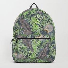 Carp Backpack