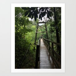 chattahoochee swinging bridge Art Print