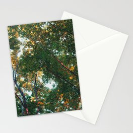 look up 03 Stationery Cards