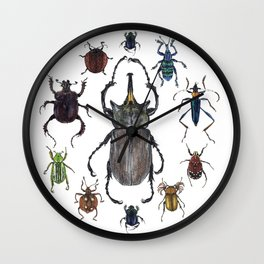Insect collection (color) Wall Clock