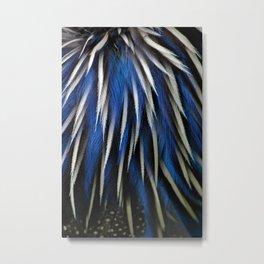 Vulturine Feathers Metal Print
