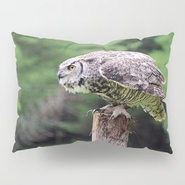 Ready to Fly: Great Horned Owl Pillow Sham
