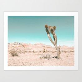 Vintage Desert Scape // Cactus Nature Summer Sun Landscape Photography Art Print