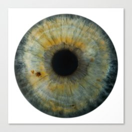 EYE Love to See You, Green Canvas Print