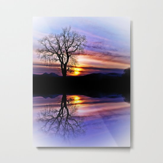 The Tree Of Reflections Metal Print