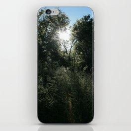 Remarkable Radiance iPhone Skin
