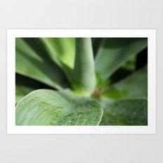 Green Daze Art Print