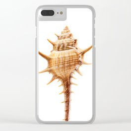 Thorn Conch Shell Clear iPhone Case