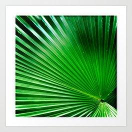 Green Angles Art Print