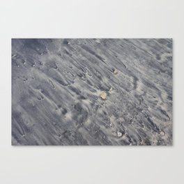 Black Sand Canvas Print