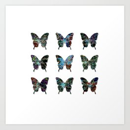 Butterfly collection usa o4 Art Print