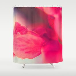 Sunday Sweetness Shower Curtain