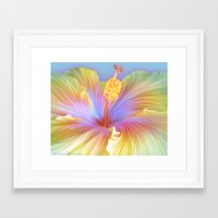 hibiscus Framed Art Prints featuring Hibiscus by ShannonPosedenti