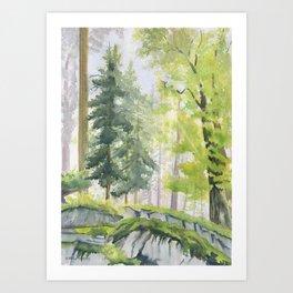 View From Rock Garden Art Print