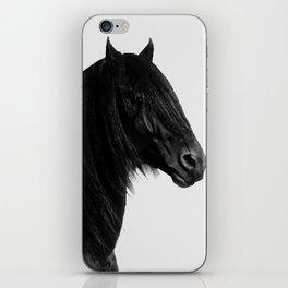 Black beauty Friesian stallion iPhone Skin