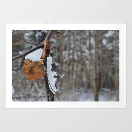 WinterColors Art Print