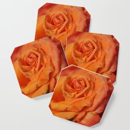 Tangerine Rose Coaster