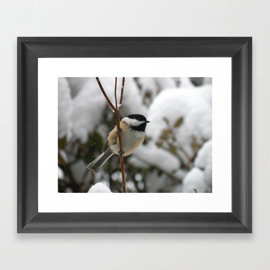winter chickadee Framed Art Print