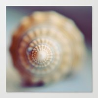 shell Canvas Prints featuring Shell by elle moss