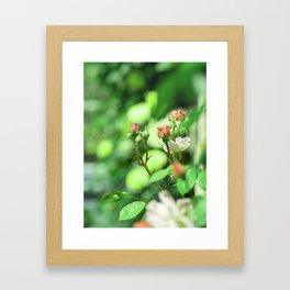 Princess garden Framed Art Print