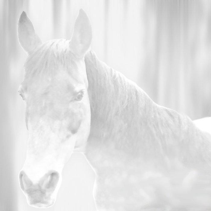Island Horse - Soft Grey Duvet Cover