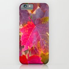 Fall Party iPhone 6s Slim Case