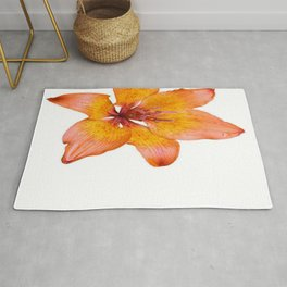 Coral Colored Lily Isolated on White Rug