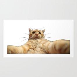 Cat Selfie Art Print