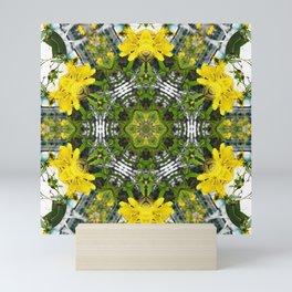 Kaleidoscope of showy St Johns Wort Mini Art Print