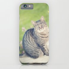 In a past life... iPhone 6s Slim Case