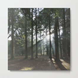 Shafts of Sunlight Metal Print