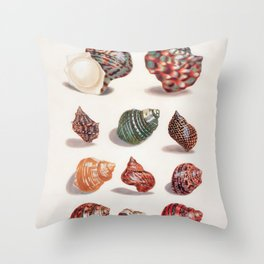 Unknown Title by Maria Sibylla Merian // Vintage Sea Shells Colorful Shapes and Sizes with Shadows Throw Pillow