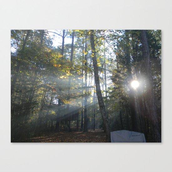 Sun Peaking through Woods. Canvas Print