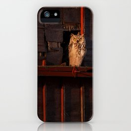 GreatHorned Owl at Sunrise iPhone Case