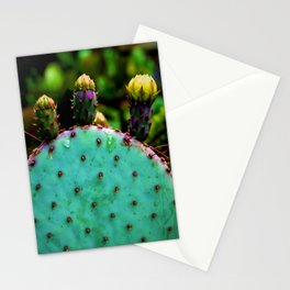 Cactus In The Garden Stationery Cards