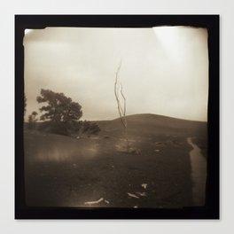 Desolation Trail Canvas Print